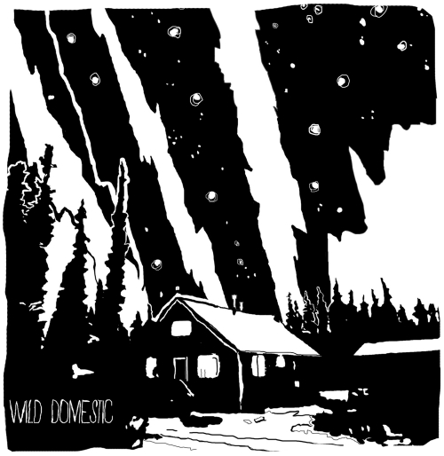 Wild Domestic, Out of Sound Records, London, Ontario, Ottawa, indie, music, canada