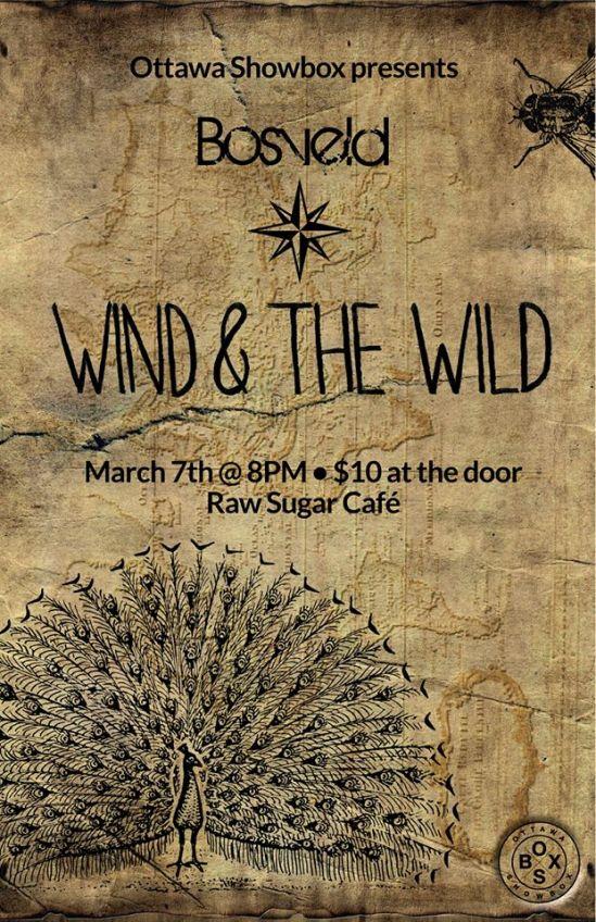 Ottawa Showbox, wind & the Wild, Raw Sugar Cafe,